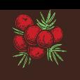 Nuestra Carta de Chocolate Fruit - Churros Factory